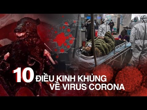 10 ĐIỀU KINH KHỦNG về VIRUS CORONA - 11 tỉnh thành Việt Nam NGUY CƠ THÀNH Ổ DỊCH