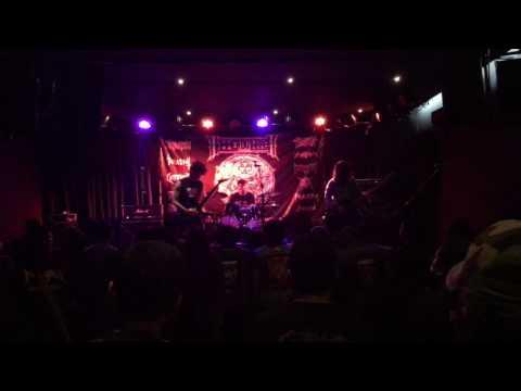 Verminator - Fatal Devastation ( live hammer ov thrash )