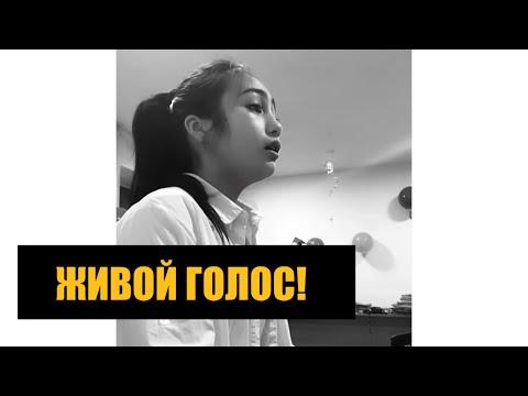Dilnoza Aidarbek Kyzy  - Лучший Кавер|  Kyrgyz Cover