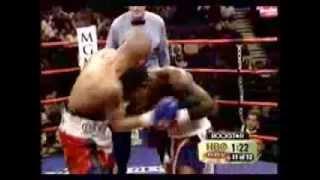 joan guzman dominican boxer wbo super feather weight champ