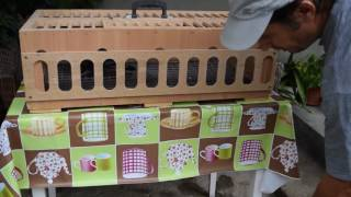 How to teach your birds to eat and drink from the basket 2016