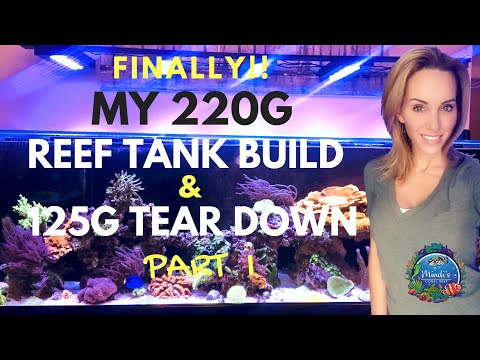 FINALLY! - My 220G Reef Tank Build - 125G Tear Down - Part I