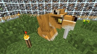 Minecraft Dinosaurs - Part 35 - Naming our Sabercat and Ocelot Charming!