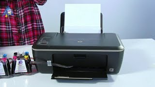 HP Deskjet 2515 и Epson Expression Home XP-100 - сравнительный обзор