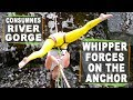 Highline whipper forces on an anchor - 73 meter line at CRG (Consumnes River Gorge) Placerville