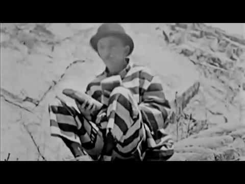 Frauds and Frenzies 1918 - Silent Comedy Short - Larry Semon / Stan Laurel