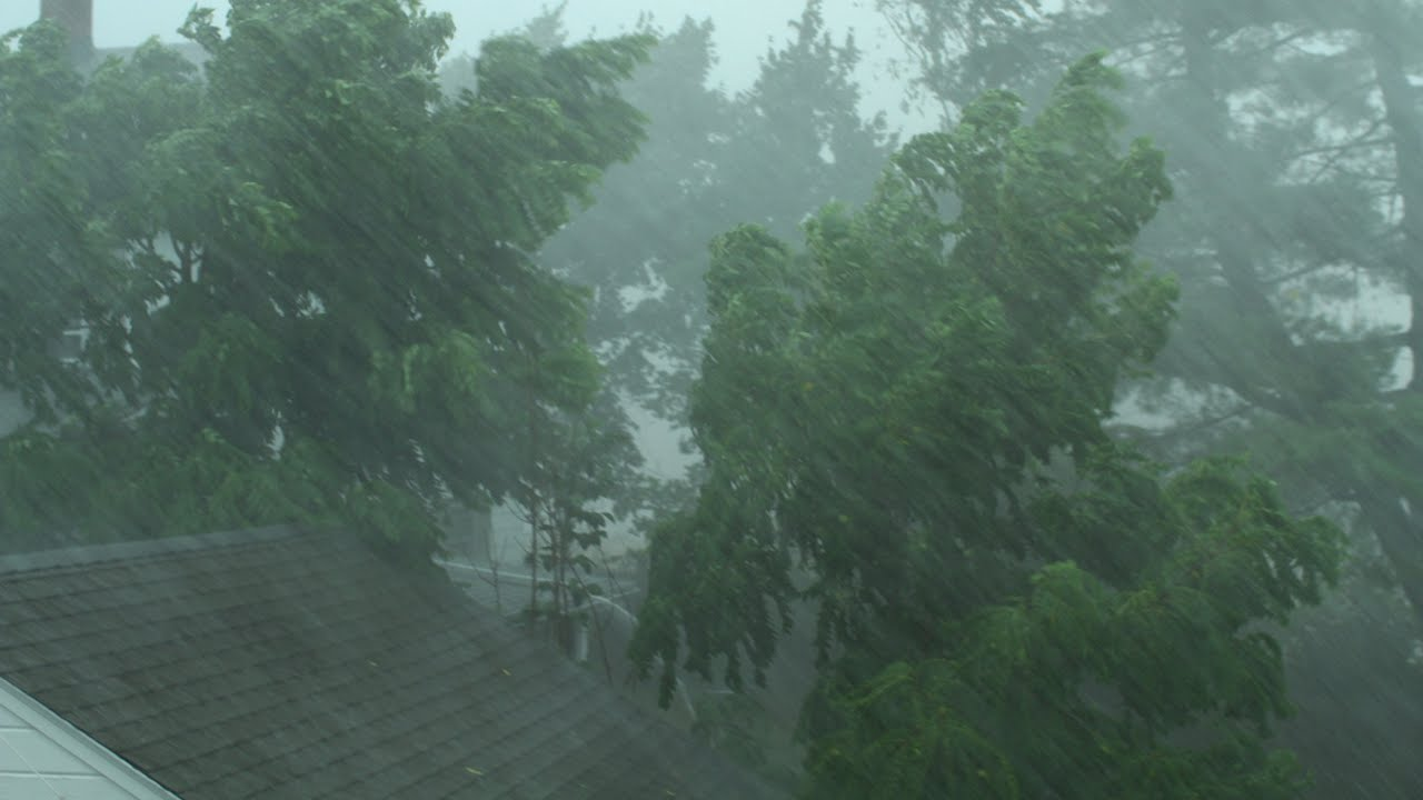 Heavy Rain and Wind Sounds For Sleeping / Relaxation - 10 ...