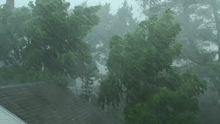 heavy rain and wind sounds for sleeping relaxation 10 hours