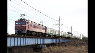 【配給輸送】 EF81-141+横浜線E233系8両 蒲須坂~片岡通過