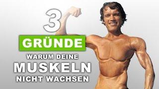 3 Gründe warum deine Muskeln nicht wachsen!