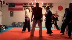 Shotokan Karate Class