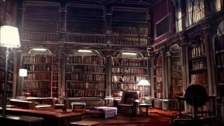 Library Room With Black Book Shelves And Wood Ladder