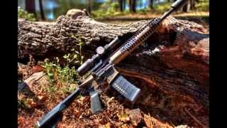 """Hog Hunt with the LWRC Six8 and SigSRD762Ti """"Patience"""""""