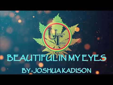 Beautiful In My Eye by Joshua Kadison Official Music Video (Karaoke Effects)