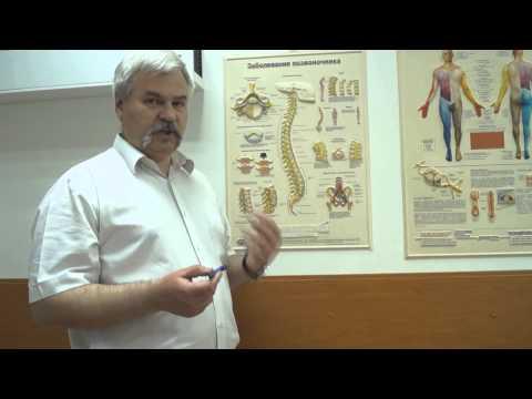 Болит поясничный отдел позвоночника