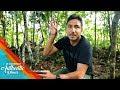 Mengendap - Ngendap Mencari Burung Cendrawasih di Papua - 26 Indonesian Authentic Places (18/10)