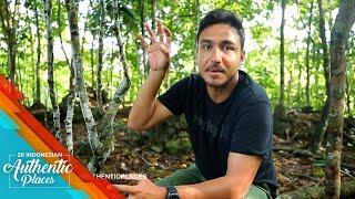 Video Mengendap - Ngendap Mencari Burung Cendrawasih di Papua - 26 Indonesian Authentic Places (18/10) download MP3, 3GP, MP4, WEBM, AVI, FLV Oktober 2018