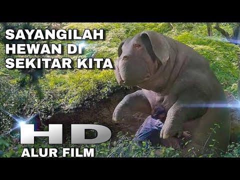 Download kisah se ekor babi yang malang - alur cerita film okja