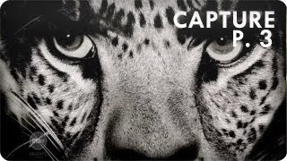 ...the leopard went for him [Mick Jagger]... ! | Ep. 2 Part 3/3 Capture | Reserve Channel