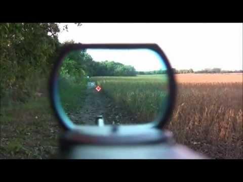 RUGER 10/22  Carbine Reflex Sight (red dot)  (POV)