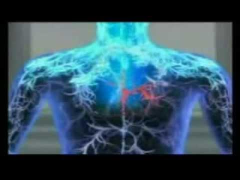 Life is Spiritual & Method of VoVi Esoteric Science
