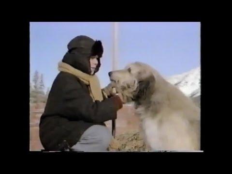 Stone Fox 1987 TV Movie Buddy Ebsen, Joey Cramer