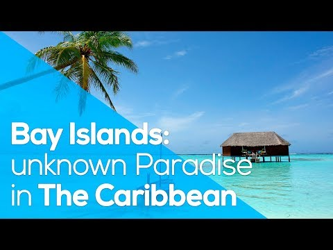 BAY ISLANDS: UNKNOWN PARADISE IN THE CARIBBEAN // WHYGO