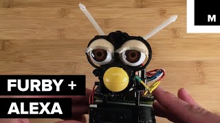 Somebody combined Furby with an Amazon Echo to make