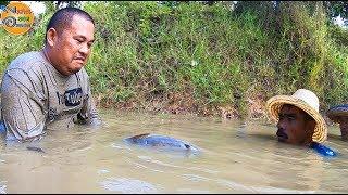 ปลาอะไร..? ทำไมทำหน้าแบบนี้ ทั้งยาวทั้งใหญ่ ทอดแห หาปลา ก้อยปลาช่อนส้มตำเผ็ดๆ