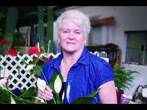 Anti-Gay Florist Fined $1,000 And Ordered Not To Discriminate