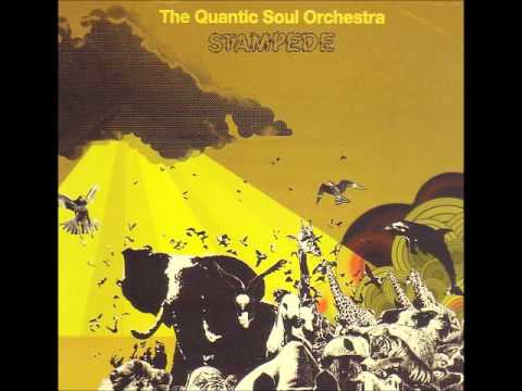 Quantic Soul Orchestra Stampede 2003)