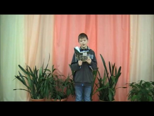 Изображение предпросмотра прочтения – ВладимирКазанский читает произведение «Чародейкою Зимою…» Ф.И.Тютчева