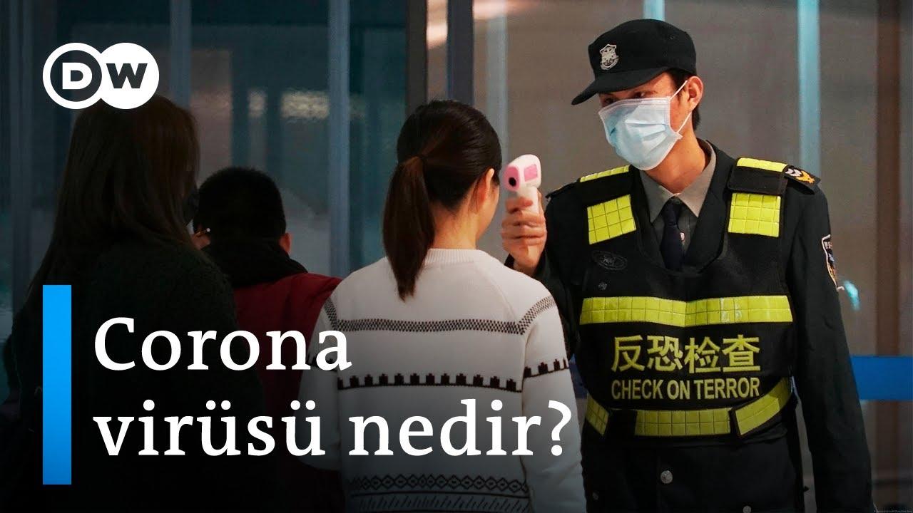 Çin'de ortaya çıkan yeni Corona virüsü nedir? - DW Türkçe