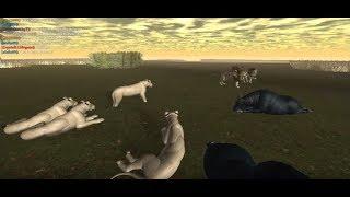 (#1) Roblox - Wild Savannah: The Getaway Lion - This group feels strange...