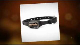 Stop Dog From Barking With Dog Anti-barking Collar