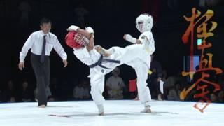 2015 極真会館 第10回 北海道空手道選手権大会 kyokushin karate