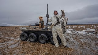 Snow Goose Hunting Arkansas Flooded Rice Fields! (Catch Clean Cook)