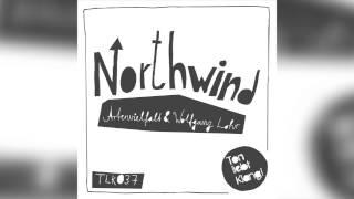 Artenvielfalt & Wolfgang Lohr - Northwind (Original Mix) 96kbps