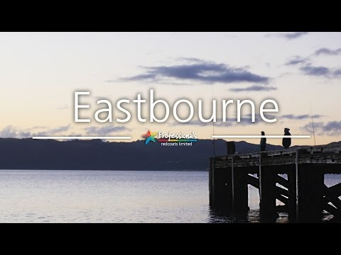 Eastbourne, Lower Hutt - Professionals