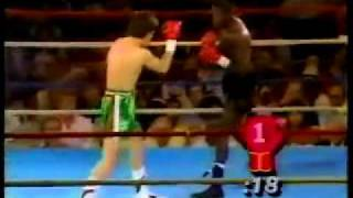 Julio Cesar Chavez KNOCKS OUT Roger Mayweather Floyd