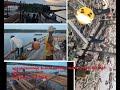 Rumah Burung Walet Bangunan x  Lantai Pakai Liang Naga Bangunan Tercepat  Hari  Orang  Mp3 - Mp4 Download