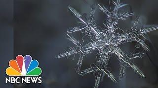 Snowflake Anatomy: Breathtaking Microscope Photos | NBC News