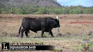 Lot 3 - Telpara Hills SQUADRON 541R