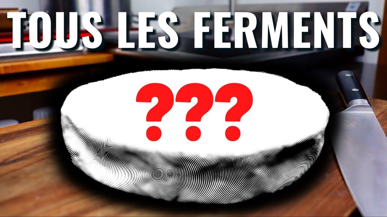 FROMAGE MAISON - L'ANARCHIE DES CULTURES BACTÉRIENNES! (Tous les ferments en même temps)