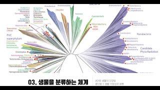 1학년 3.1.3. 생물을 분류하는 체계