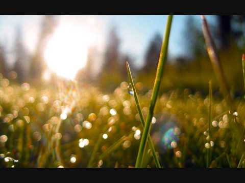 "Joseph Haydn - Symphony No. 6 in D, ""Morning"""