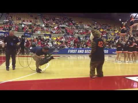 Fun at the NCAA tournament