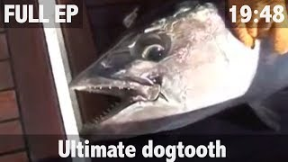 ULTIMATE FISHING - Ultimate Dogtooth Tuna