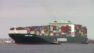 Large Evergreen Container Ship EVER LOTUS departing Newark, NJ Container Terminal