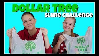 DOLLAR TREE SLIME CHALLENGE || Taylor and Vanessa